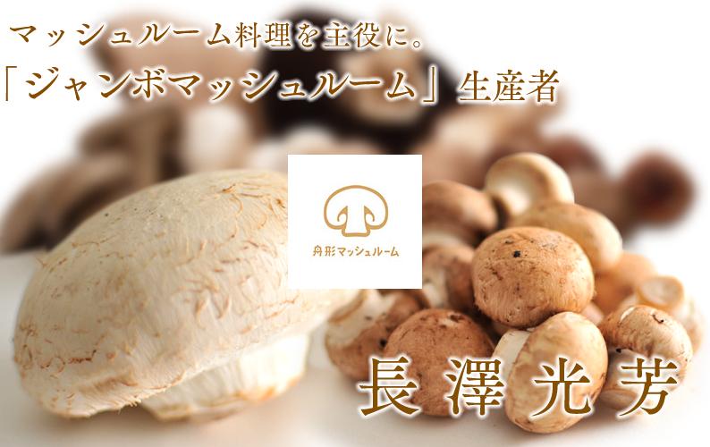 ajibito_mushroom01