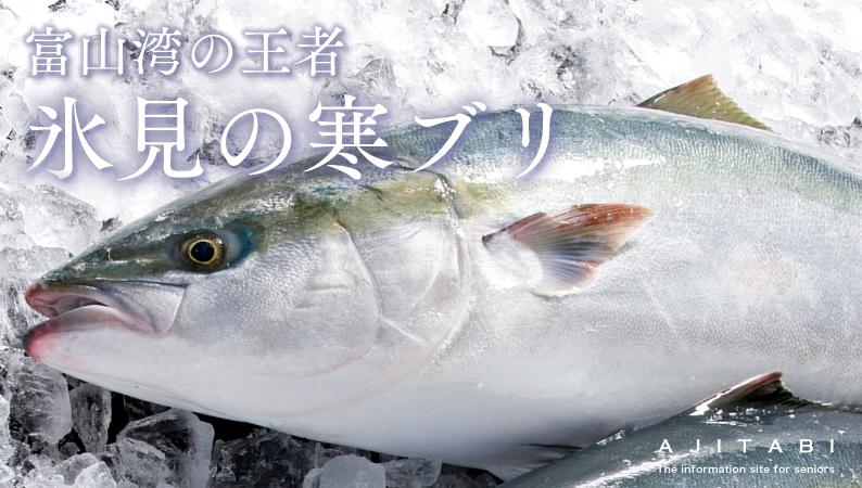 「氷見 寒ブリ」の画像検索結果
