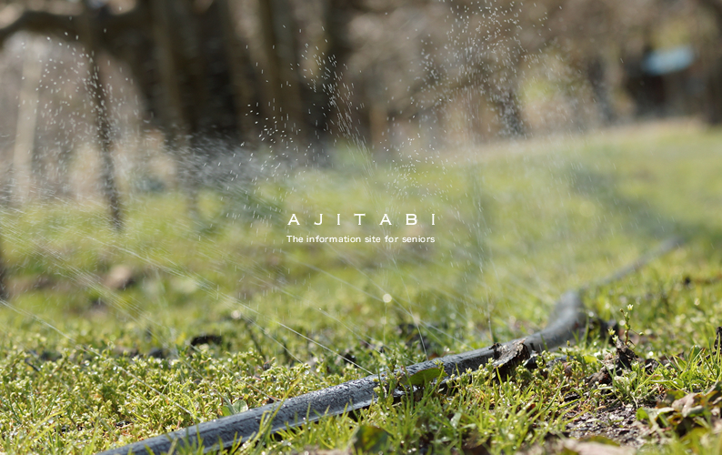 ajibito_konta02