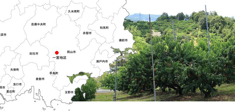 ichinomiya_map