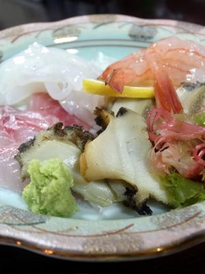 hasegawa300